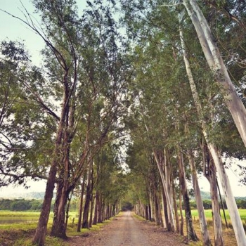 Entrada da Fazenda Quilombo